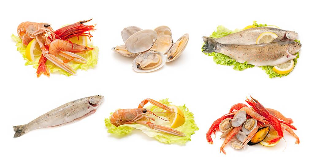 海鮮水產品蚌類孔雀石綠檢驗