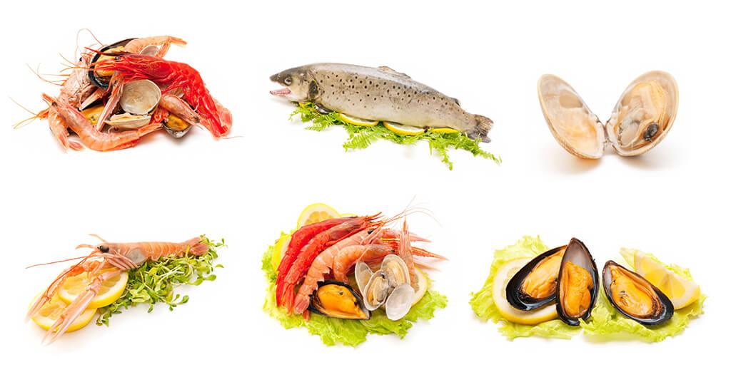 蚌殼海鮮水產品孔雀石綠檢驗
