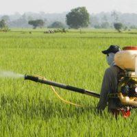 373項農產品農藥殘留檢測中心檢驗項目標準與價格費用