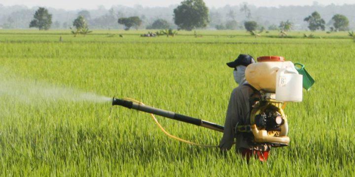 380、381 項農產品農藥殘留檢測中心檢驗項目標準與價格費用