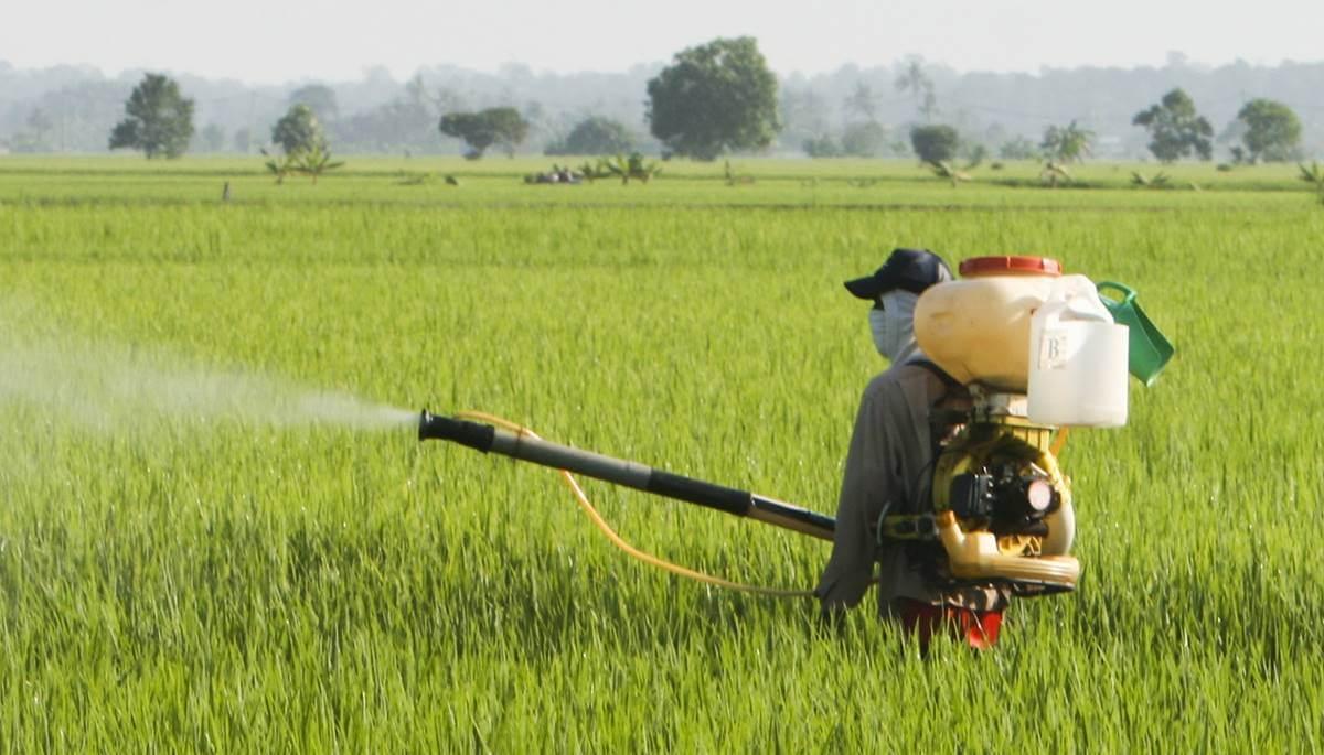 農藥殘留檢驗分析