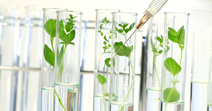 生態環境毒理試驗分析