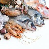 食藥署最新攝食指南 呼籲孕婦幼童少吃部分大型魚種